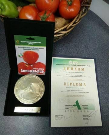 """TomGEM tomato variety """"Aleno sartse"""" (Ruby Heart)"""